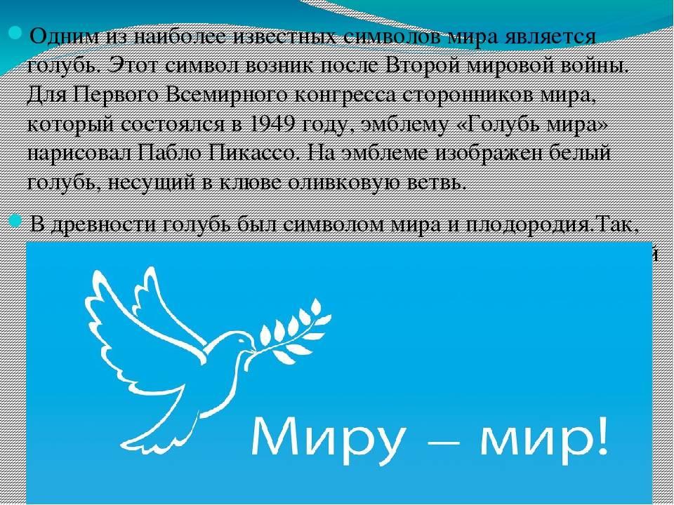 ᐉ почему голубь символ мира? - zoomanji.ru