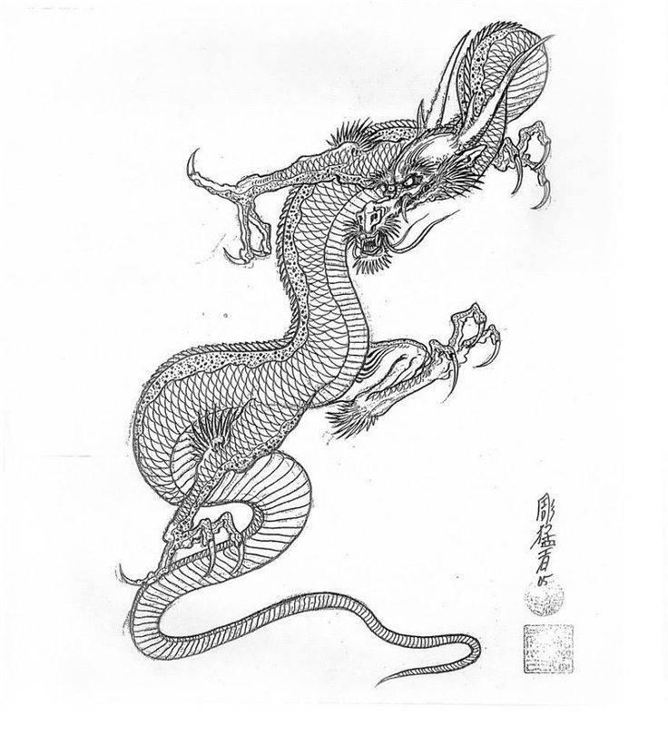 Драконы в японской мифологии — ямата но ороти, ватацуми, рю во
