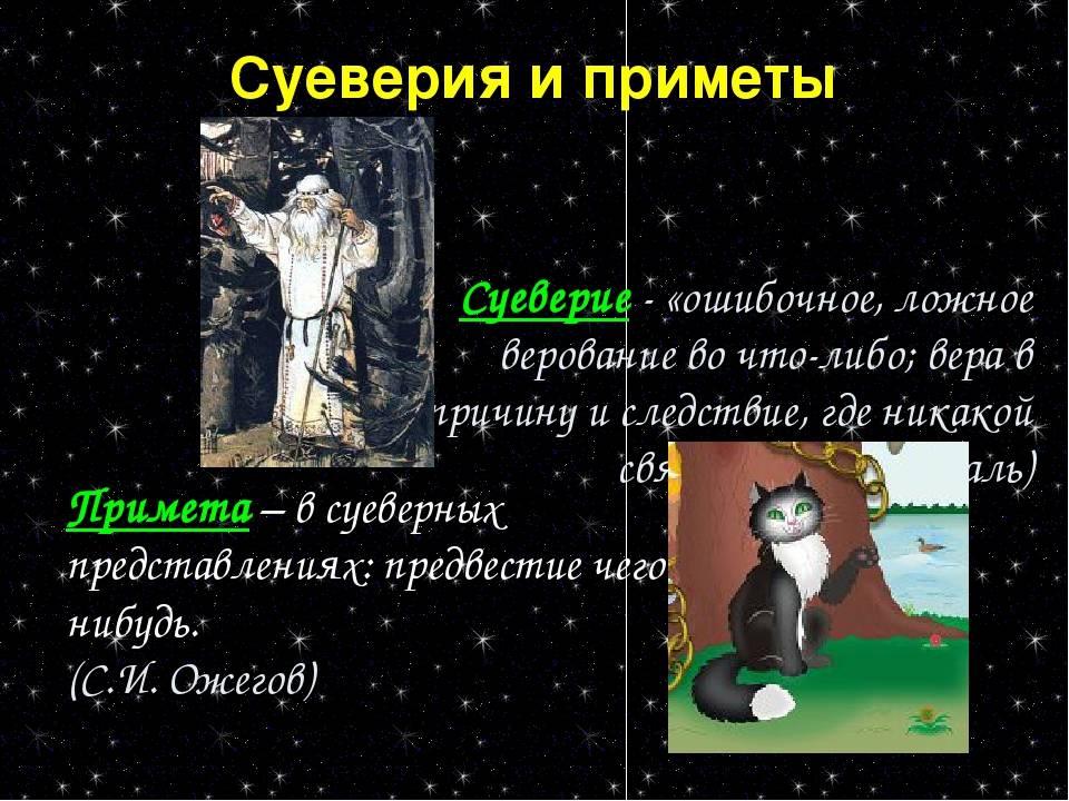 Толкование приметы: к чему божья коровка появляется в квартире и садится на человека толкование приметы: к чему божья коровка появляется в квартире и садится на человека