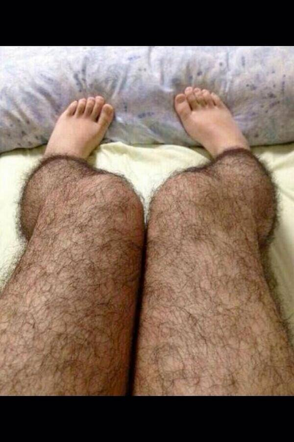 Сонник волосатые ногши. к чему снится волосатые ногши видеть во сне - сонник дома солнца
