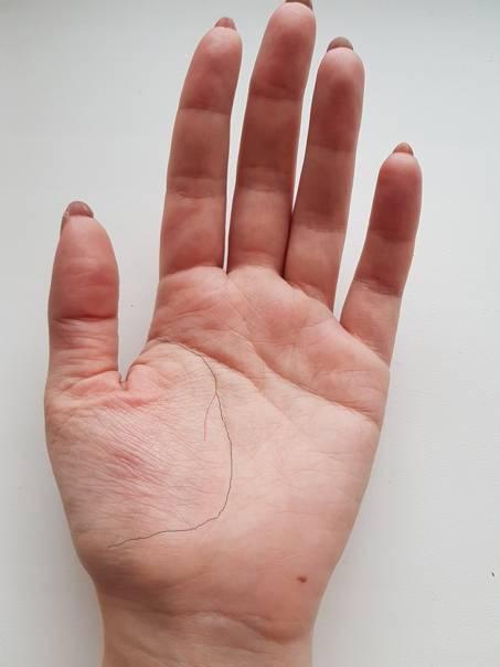 Линия брака на руке с фото и расшифровкой: хиромантия для начинающих с разъяснениями