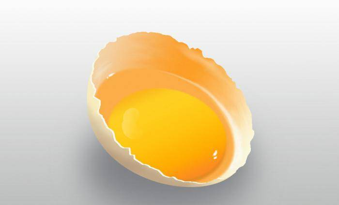 К чему снятся тухлые яйца по соннику? видеть во сне тухлые яйца – толкование снов.