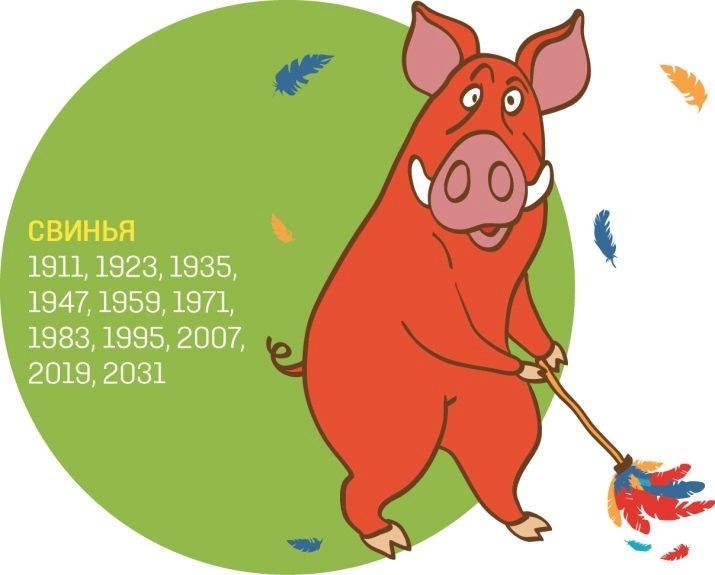 Мужчина-свинья (кабан) - женщина-свинья (кабан) совместимость