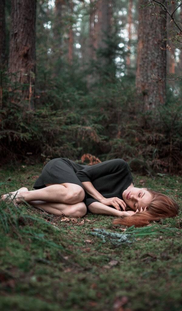 Сонник лес к чему снится во сне? видеть лес что означает?